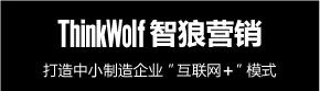 上海智狼营销策划在线沟通